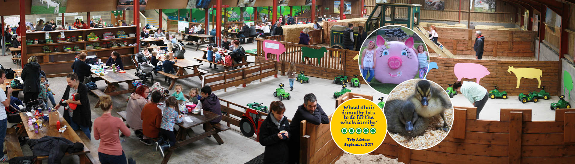 Hesketh Farm Park at Bolton Abbey a fantastic Family day out for
